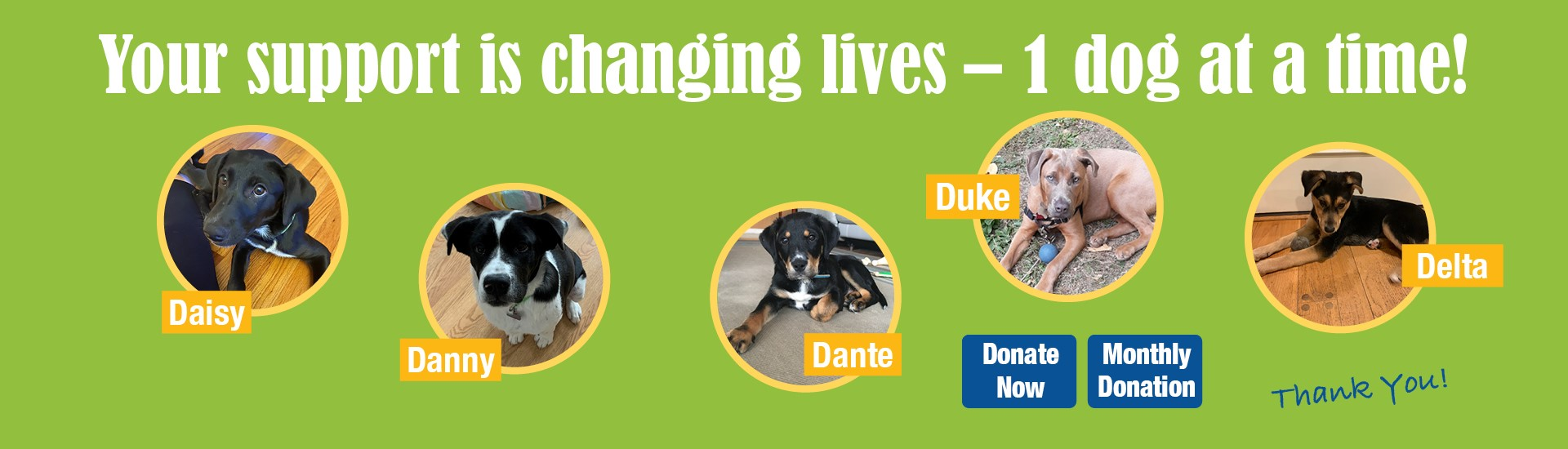 Support Putnam Service Dogs